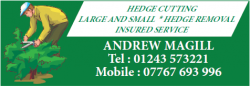 Hedge Cutting, Andrew Magill