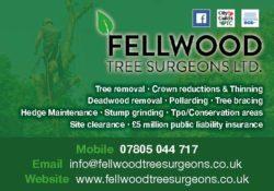 Fellwood Tree Surgeons